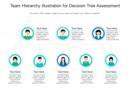 Team Hierarchy Illustration For Decision Tree Assessment Infographic Template