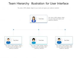 Team Hierarchy Illustration For User Interface Infographic Template