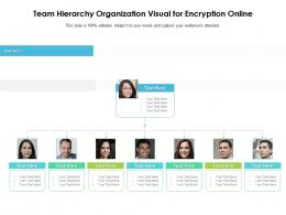 Team Hierarchy Organization Visual For Encryption Online Infographic Template