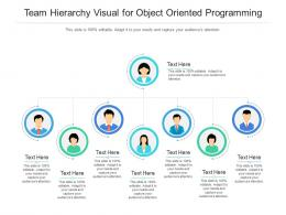 Team Hierarchy Visual For Object Oriented Programming Infographic Template