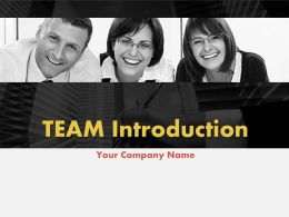 Team Introduction Workforce And Responsibilities PowerPoint Presentation With Slides