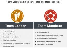 Team Leader And Members Roles And Responsibilities Ppt Example