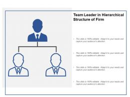 Team Leader In Hierarchical Structure Of Firm
