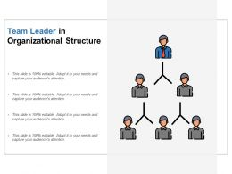 Team Leader In Organizational Structure