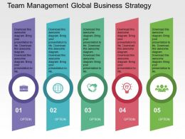 Team Management Global Business Strategy Flat Powerpoint Design