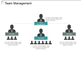 Team Management Ppt Powerpoint Presentation Gallery Background Designs Cpb