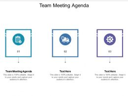 Team Meeting Agenda Ppt Powerpoint Presentation Gallery Information Cpb