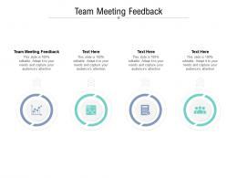 Team Meeting Feedback Ppt Powerpoint Presentation Model Portfolio Cpb