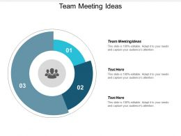 Team Meeting Ideas Ppt Powerpoint Presentation Layouts Designs Cpb