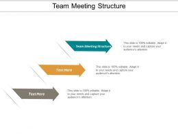 Team Meeting Structure Ppt Powerpoint Presentation Model Layout Ideas Cpb