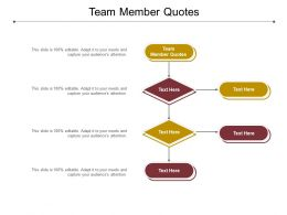 Team Member Quotes Ppt Powerpoint Presentation Slides Objects Cpb