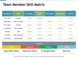Team Member Skill Matrix Infrastructure Ppt Powerpoint Presentation Inspiration Styles