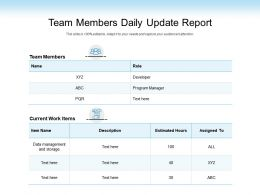 Team Members Daily Update Report