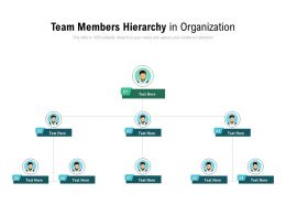Team Members Hierarchy In Organization