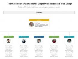 Team Members Organizational Diagram For Responsive Web Design Infographic Template