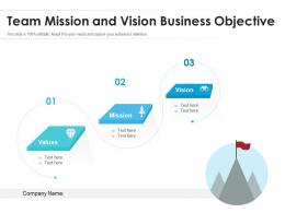 Team Mission And Vision Business Objective