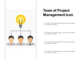 Team Of Project Management Icon