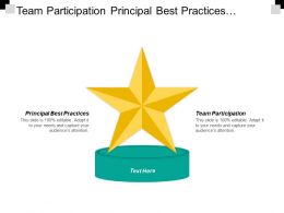 Team Participation Principal Best Practices Administration Stewardship Draft Approved