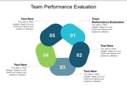 Team Performance Evaluation Ppt Powerpoint Presentation Layouts Ideas Cpb
