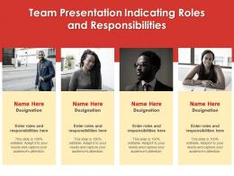 Team Presentation Indicating Roles And Responsibilities Infographic Template