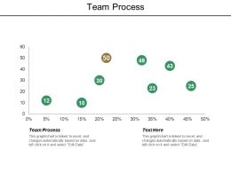 Team Process Ppt Powerpoint Presentation Gallery Outline Cpb