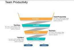 Team Productivity Ppt Powerpoint Presentation Gallery Outline Cpb