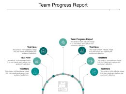 Team Progress Report Ppt Powerpoint Presentation File Inspiration Cpb