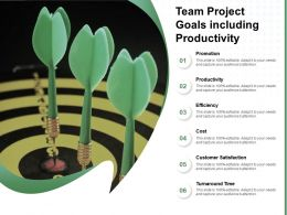 Team Project Goals Including Productivity