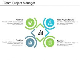 Team Project Manager Ppt Powerpoint Presentation Gallery Background Cpb
