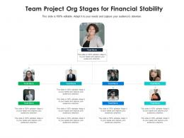 Team Project Org Stages For Financial Stability Infographic Template