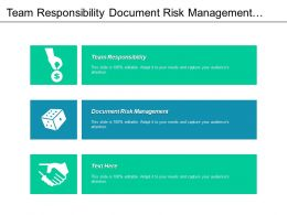 Team Responsibility Document Risk Management Risk Management Examples Cpb