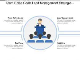 Team Roles Goals Lead Management Strategic Accounts Customer Success