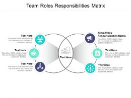 Team Roles Responsibilities Matrix Ppt Powerpoint Presentation Slides Themes Cpb