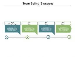 Team Selling Strategies Ppt Powerpoint Presentation Layouts Layouts Cpb