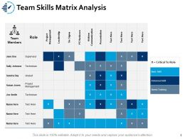 Team Skills Matrix Analysis Project Ppt Powerpoint Presentation Icon Smartart
