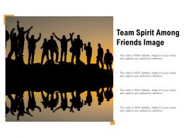 Team Spirit Among Friends Image