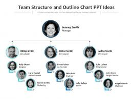 Team Structure And Outline Chart Ppt Ideas Infographic Template