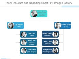 Team Structure And Reporting Chart Ppt Images Gallery