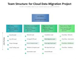 Team Structure For Cloud Data Migration Project