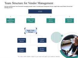 Team Structure For Vendor Management Introducing Effective VPM Process In The Organization Ppt Background
