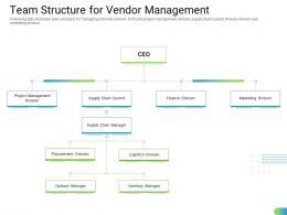Team Structure For Vendor Management Standardizing Supplier Performance Management Process Ppt Demonstration