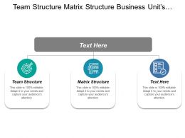 Team Structure Matrix Structure Business Units Competitive Position