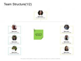 Team Structure Position Company Management Ppt Infographics