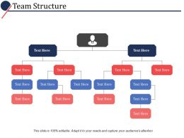 Team Structure Ppt Powerpoint Presentation File Slide Portrait