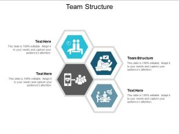 Team Structure Ppt Powerpoint Presentation Show Format Cpb