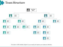 Team Structure Ppt Summary Design Templates