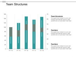 Team Structures Ppt Powerpoint Presentation Gallery Background Image Cpb