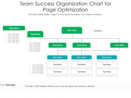 Team Success Organization Chart For Page Optimization Infographic Template