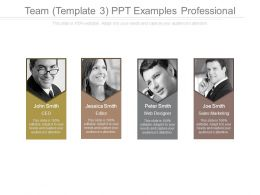 Team Template 3 Ppt Examples Professional