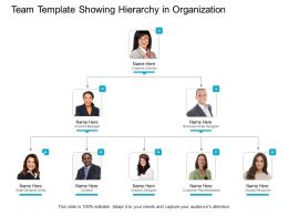 Team Template Showing Hierarchy In Organization
